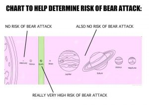 Solar system showing bear attacks only happen on Earth.